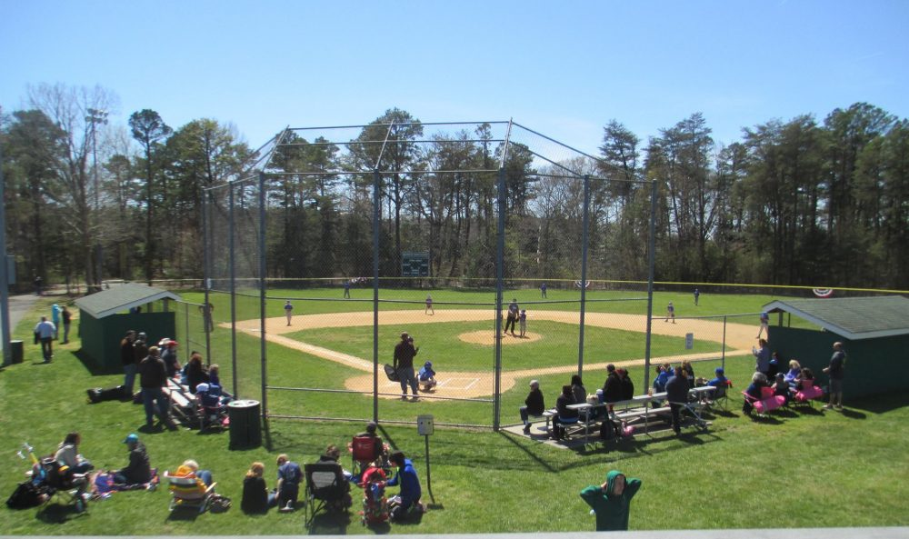 View of baseball diamond and benches