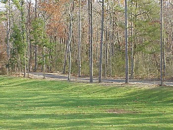 Tree lined jogging and walking path.